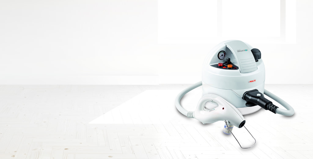 Steam cleaner against bed bugs