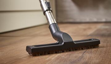 Forzaspira Lecologico parquet brush